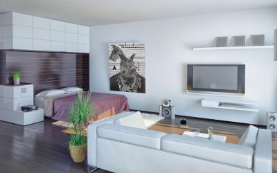 1-Zimmer-Wohnung gemütlich einrichten